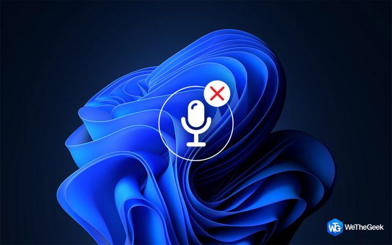 Как исправить ошибку отсутствия внутреннего микрофона в Windows 11/10