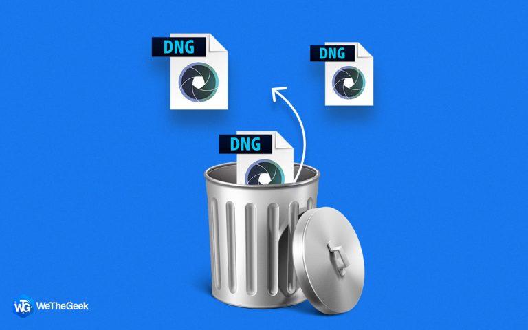 Потерянные файлы DNG?  3 способа восстановить удаленные файлы DNG в Windows
